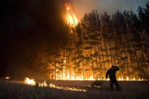 FILE - In this Wednesday, Aug. 4, 2010 picture, a firefighter works to extinguish a forest fire near the village of Dolginino in the Ryazan region, some 180 km (111 miles) southeast of Moscow. The World Meteorological Organization (WMO) says the weather-related cataclysms of July and August fit patterns predicted by climate scientists, although those scientists always shy from tying individual disasters directly to global warming. (AP Photo)