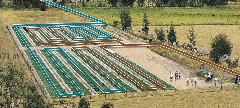 Por ser um processo natural e sem aditivos químicos, os sistemas de filtros verdes são econômicos e praticamente isentos de manutenção. | Foto: Kärcher/Divulgação
