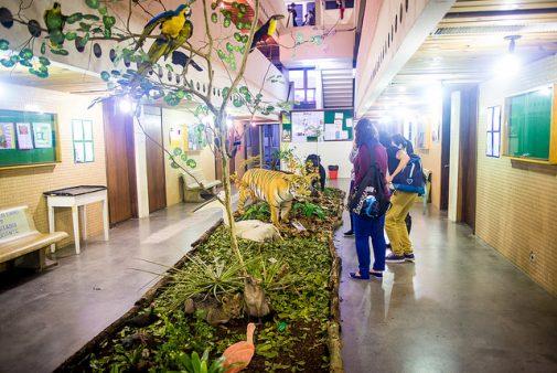 A Exposição está montada no Saguão do Departamento de Anatomia. Foto: Marcos Solivan