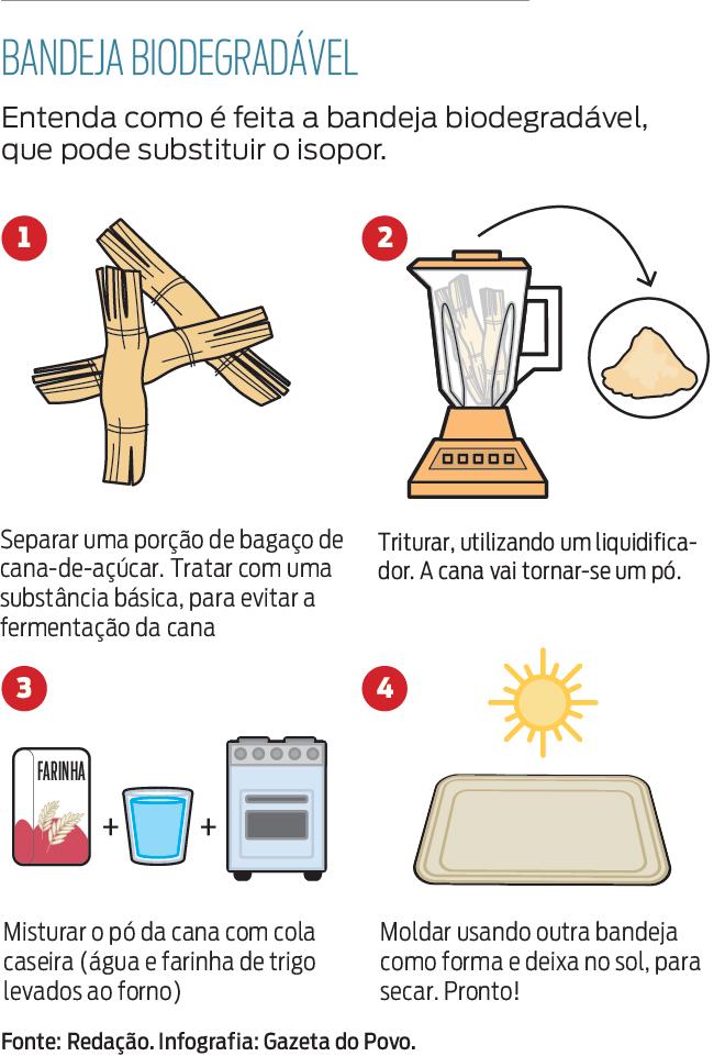 bandeja biodegradavel.pdf